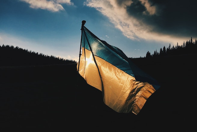 The Ukrainian flag flying over some trees as the sun sets.
